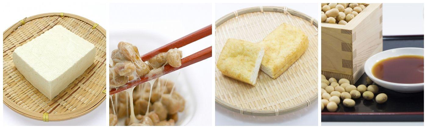 健康と美を保つ腸内環境を整える食品と環境のサポート 日本大豆食品協会