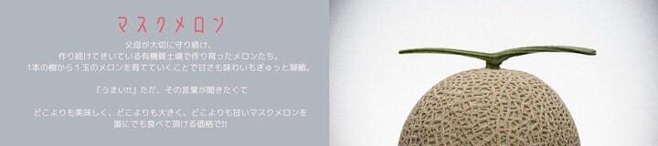 千葉県旭市こだわりづくしのマスクメロン通販 伊藤農園