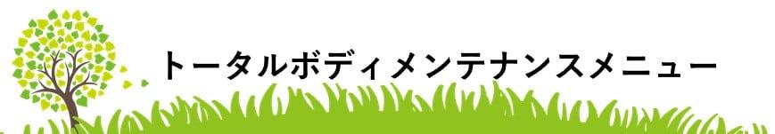 松戸市馬橋リベルハーブピーリングトータルボディメンテナンスのレジーナメニュー