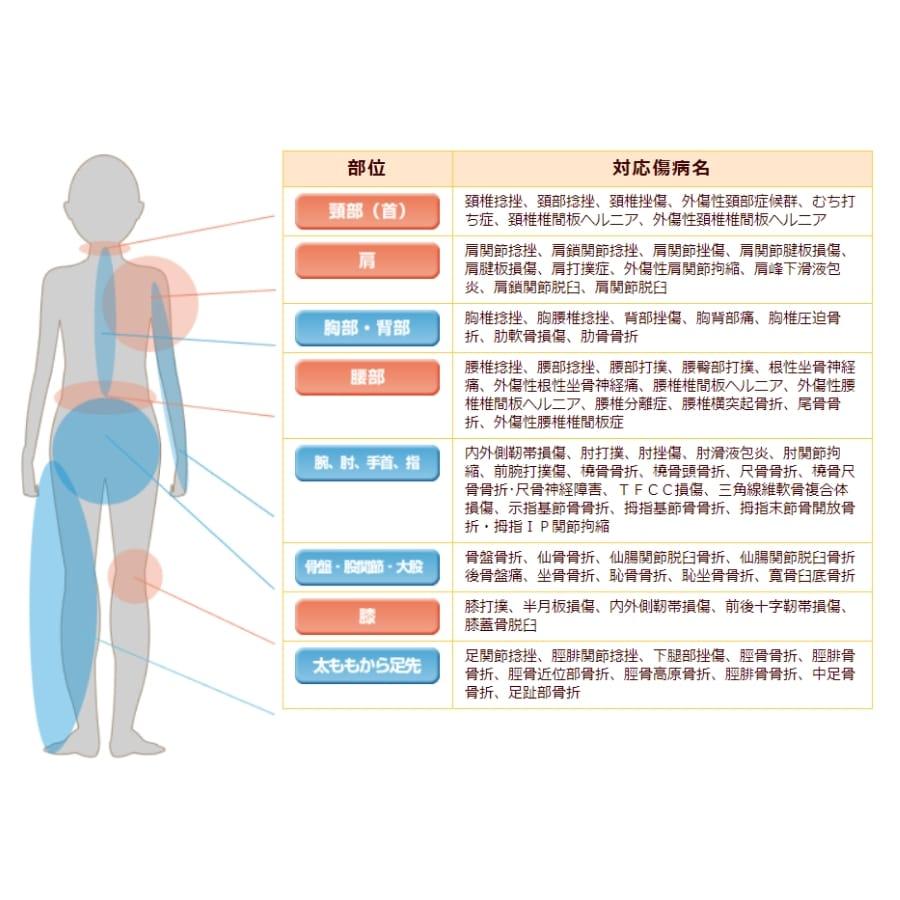 部位対応傷病名 頸部(首)頚椎捻挫、頚部捻挫、頚椎挫傷、外傷性頚部症候群、むち打ち症、頚椎椎間板ヘルニア、外傷性頚椎椎間板ヘルニア 肩肩関節捻挫、肩鎖関節捻挫、肩関節挫傷、肩関節腱板損傷、肩腱板損傷、肩打撲症、外傷性肩関節拘縮、肩峰下滑液包炎、肩鎖関節脱臼、肩関節脱臼 胸部・背部胸椎捻挫、胸腰椎捻挫、背部挫傷、胸背部痛、胸椎圧迫骨折、肋軟骨損傷、肋骨骨折 腰部腰椎捻挫、腰部捻挫、腰部打撲、腰臀部打撲、根性坐骨神経痛、外傷性根性坐骨神経痛、腰椎椎間板ヘルニア、外傷性腰椎椎間板ヘルニア、腰椎分離症、腰椎横突起骨折、尾骨骨折、外傷性腰椎椎間板症 腕、膝、手首、指内外側靭帯損傷、肘打撲、肘挫傷、肘滑液包炎、肘関節拘縮、前腕打撲傷、橈骨骨折、橈骨頭骨折、尺骨骨折、橈骨尺骨骨折・尺骨神経障害、TFCC損傷、三角線維軟骨複合体損傷、示指基節骨骨折、拇指基節骨骨折、拇指末節骨開放骨折・拇指IP関節拘縮 骨盤〜股間節〜大股骨盤骨折、仙骨骨折、仙腸関節脱臼骨折、仙腸関節脱臼骨折後骨盤痛、坐骨骨折、恥骨骨折、恥坐骨骨折、寛骨臼底骨折 膝膝打撲、半月板損傷、内外側靭帯損傷、前後十字靭帯損傷、膝蓋骨脱臼 太ももから足先足関節捻挫、脛腓関節捻挫、下腿部挫傷、脛骨骨折、脛腓骨骨折、脛骨近位部骨折、脛骨高原骨折、脛腓骨骨折、中足骨骨折、足趾部骨折