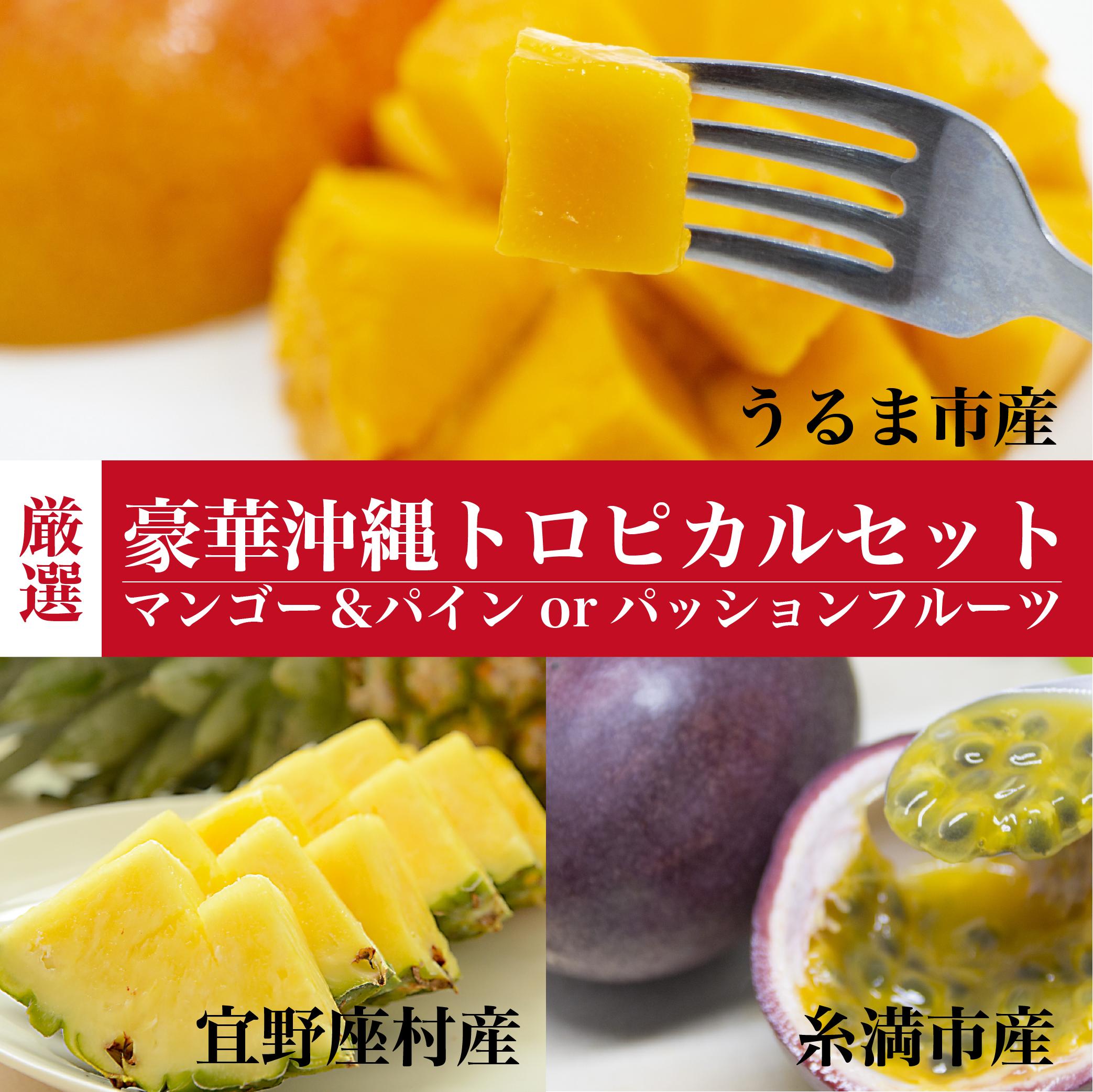 厳選|豪華沖縄トロピカルセット|マンゴー&パインorパッションフルーツ|うるマルシェ通販|ネットスーパー|野菜セット|直売所