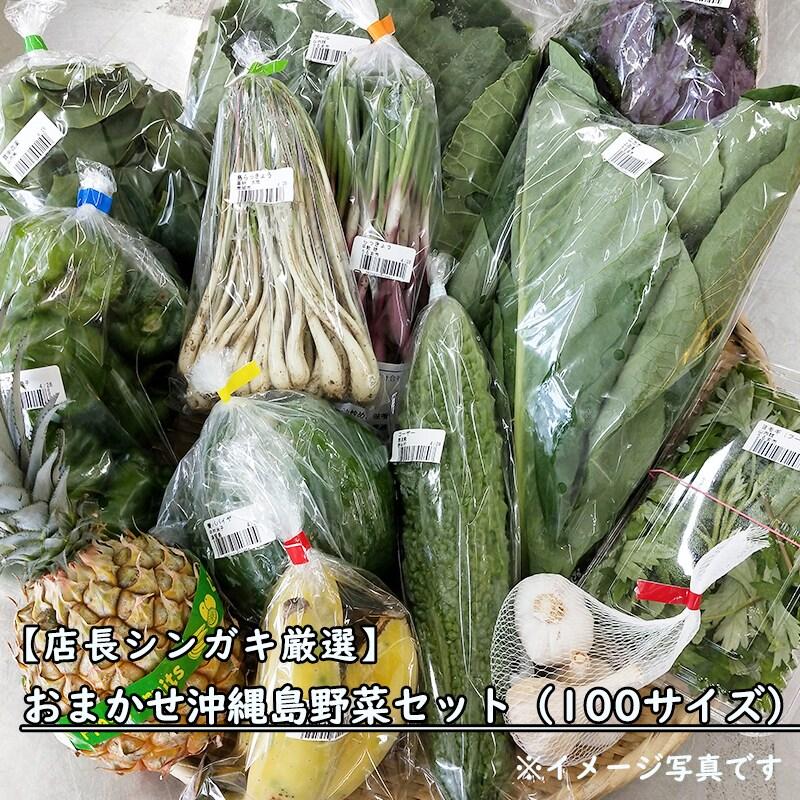 店長シンガキ厳選|おまかせ沖縄島野菜セット(100サイズ)|月1お試し手作り野菜のおいしさを実感してください|農産スタッフが選ぶ!おまかせ野菜・果物セット|うるマルシェ通販|ネットスーパー|野菜セット|直売所