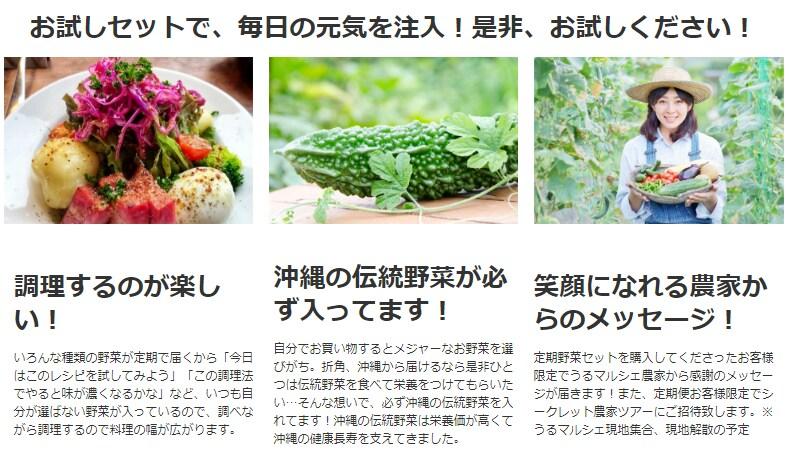 お試しセットで、毎日の元気を注入!是非、お試しください!調理するのが楽しい! いろんな種類の野菜が定期で届くから「今日はこのレシピを試してみよう」「この調理法でやると味が濃くなるかな」など、いつも自分が選ばない野菜が入っているので、調べながら調理するので料理の幅が広がります。沖縄の伝統野菜が必ず入ってます! 自分でお買い物するとメジャーなお野菜を選びがち。折角、沖縄から届けるなら是非ひとつは伝統野菜を食べて栄養をつけてもらいたい…そんな想いで、必ず沖縄の伝統野菜を入れてます!沖縄の伝統野菜は栄養価が高くて沖縄の健康長寿を支えてきました。笑顔になれる農家からのメッセージ! 定期野菜セットを購入してくださったお客様限定でうるマルシェ農家から感謝のメッセージが届きます!また、定期便お客様限定でシークレット農家ツアーにご招待致します。※うるマルシェ現地集合、現地解散の予定