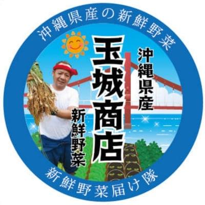 人もモノも地産地消|うるま市の沖縄島やさい|玉城商店の農家応援ショップ