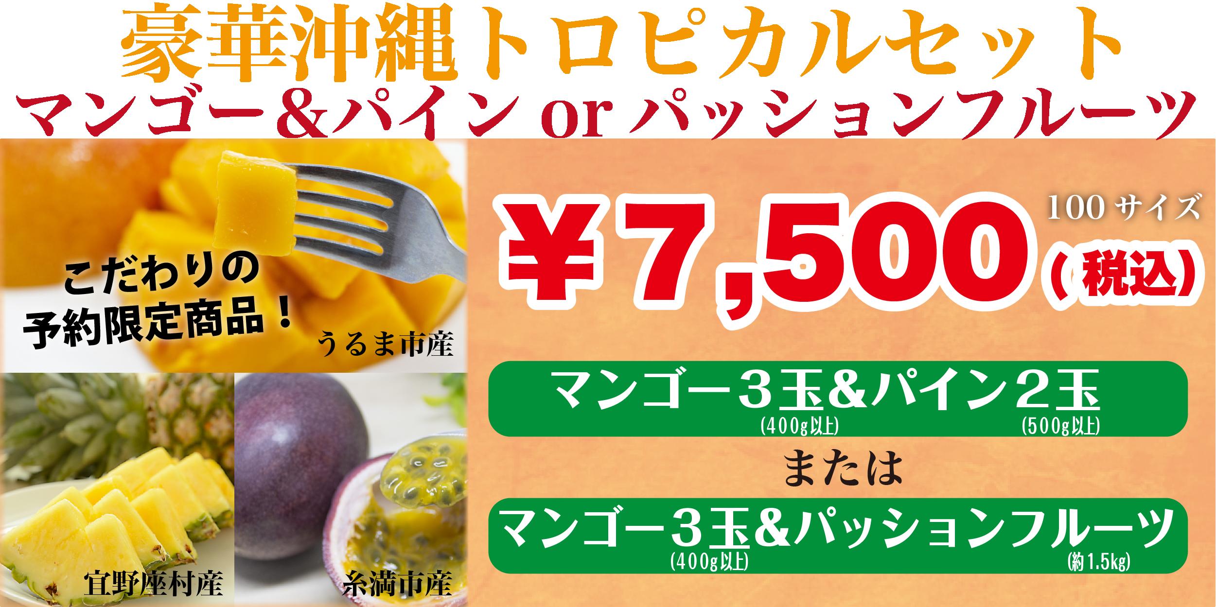 豪華沖縄トロピカルセット|マンゴー&パインorパッションフルーツ|こだわりの予約限定商品