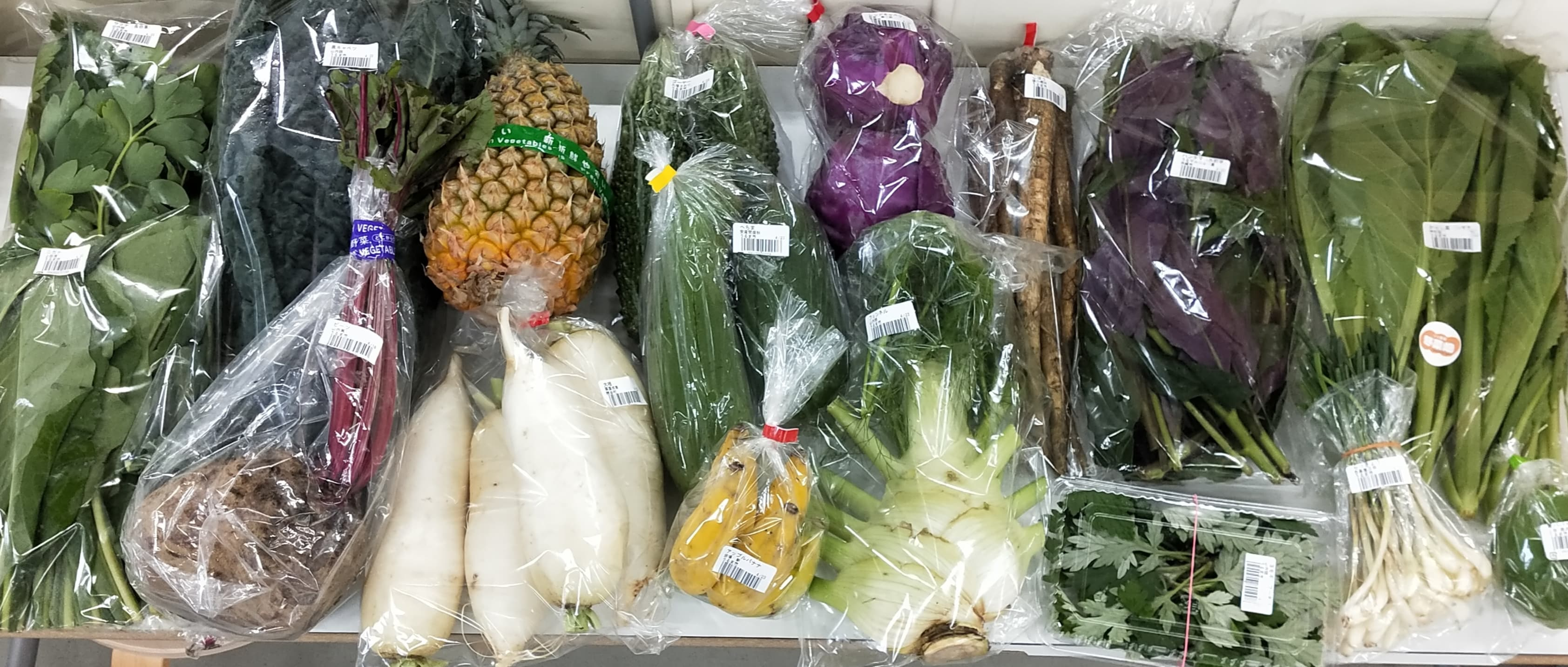 <内容例1> 沖縄伝統野菜:サクナ、ニガナ、ハンダマ、ヨモギ、島らっきょう、ヘチマ、ゴーヤ、イーチョーバー 野菜:カーボロネロ、ビーツ、大根、紫キャベツ、ごぼう、からし菜、青パパイヤ 果物:スナックパイン、アップルバナナ