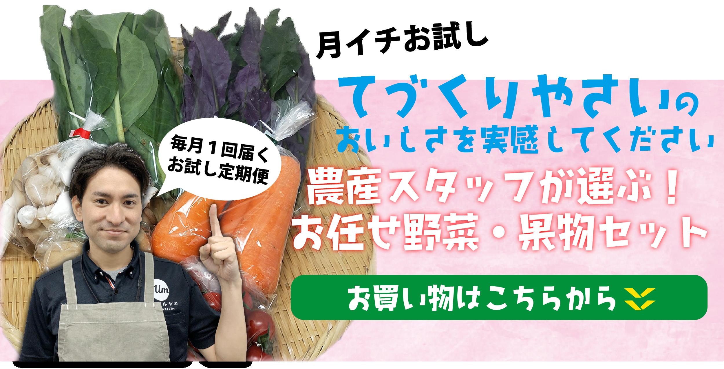期間限定通販オープン記念!てづくりやさいのおいしさを実感してください|農産酢sたっふが選ぶ!おまかせ野菜・果物セット