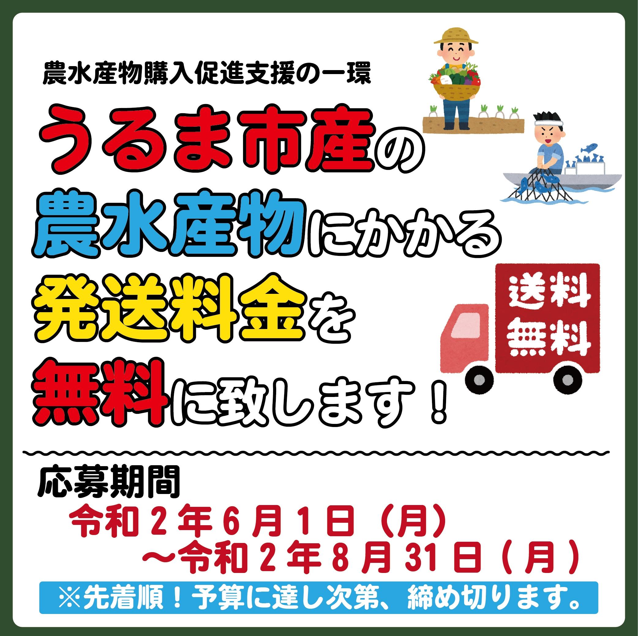 送料無料|うるマルシェ|ネットスーパー|沖縄|通販