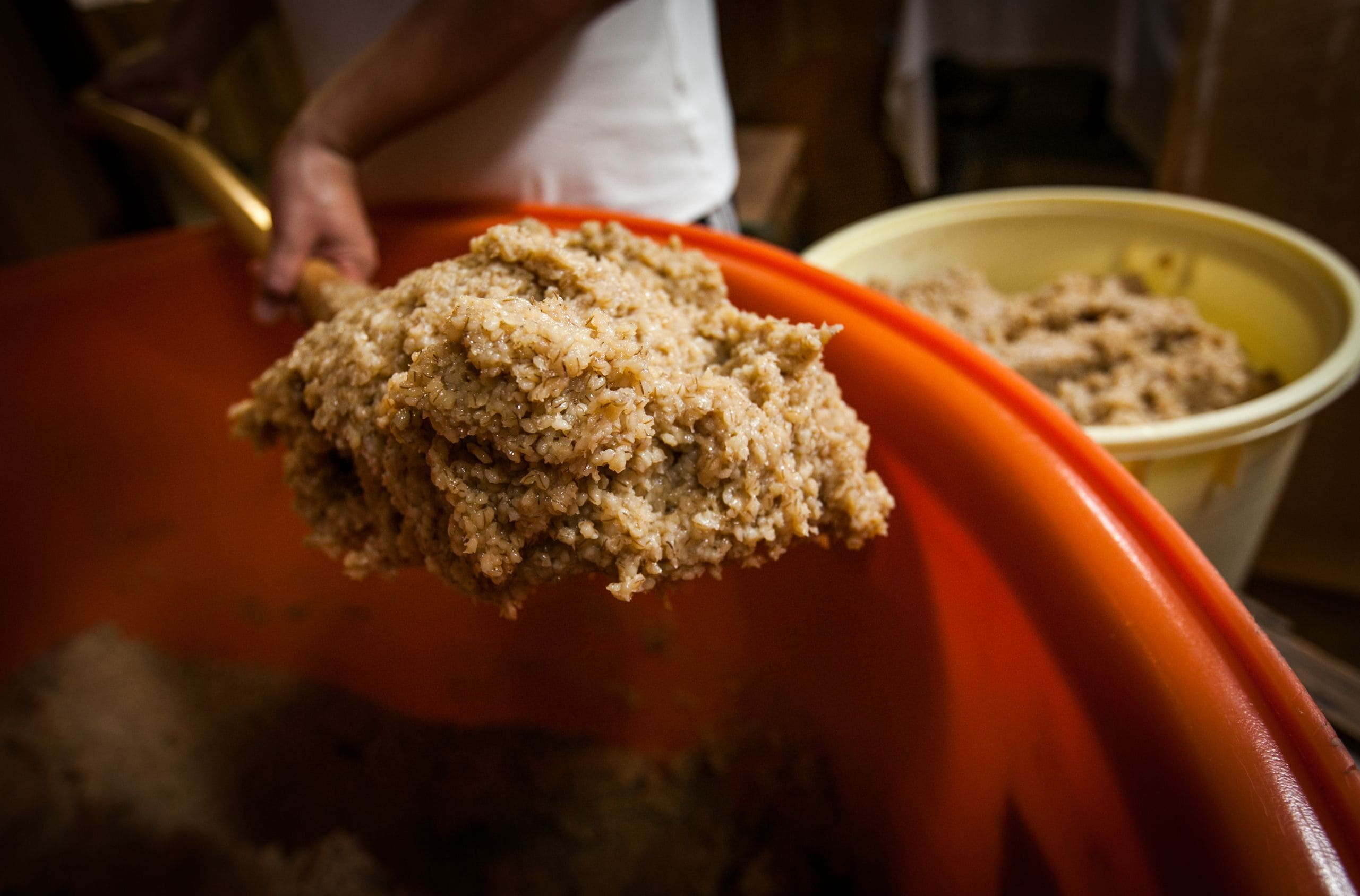 麦味噌通販 伊豫醸造
