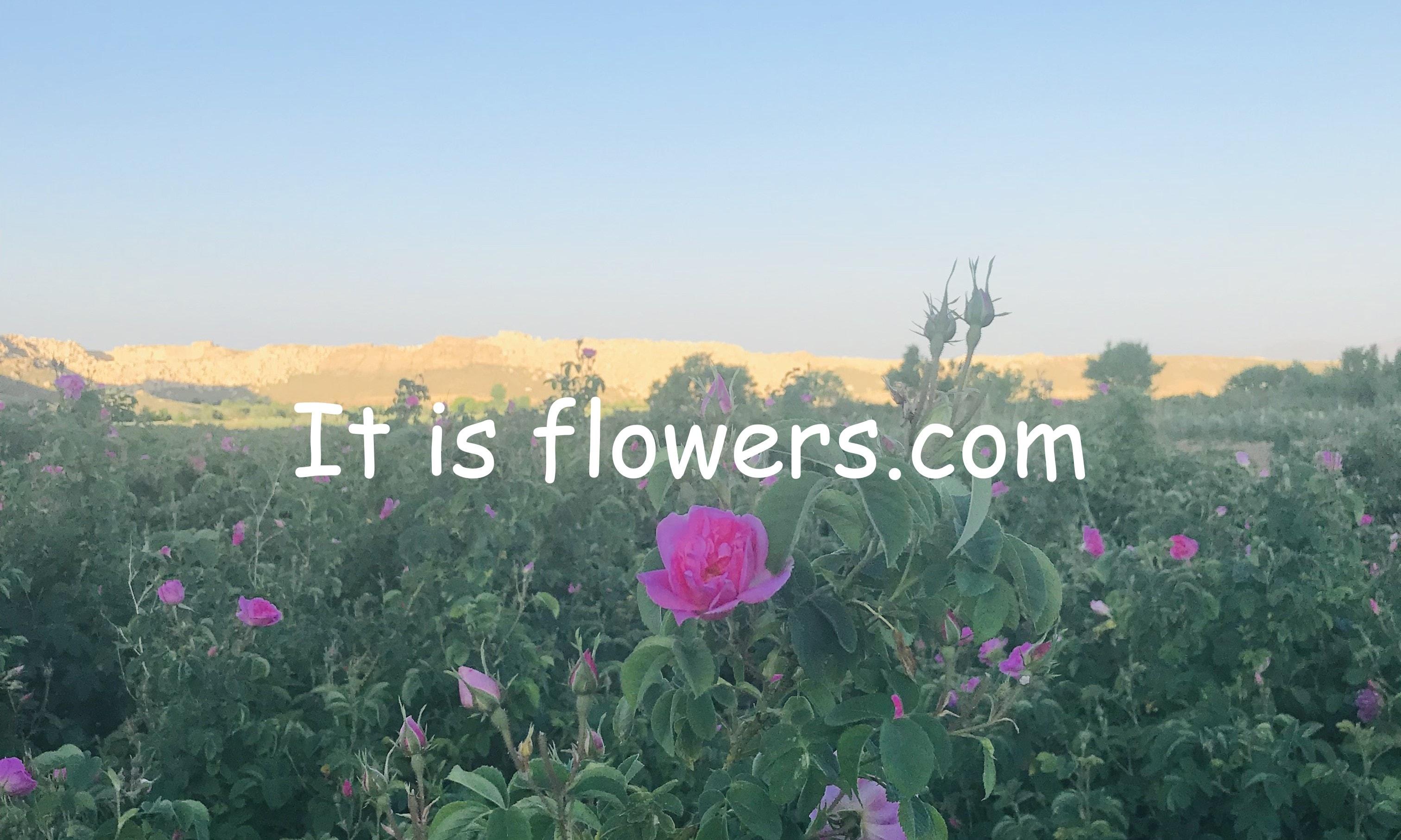 It is flowers
